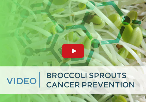 broccoli-sprouts-for-cancer-prevention-video