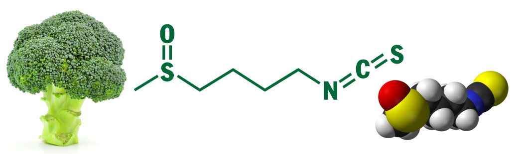 broccoli chemistry